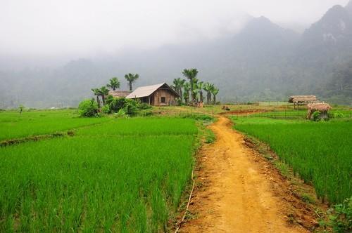 a little village in Xuan Son