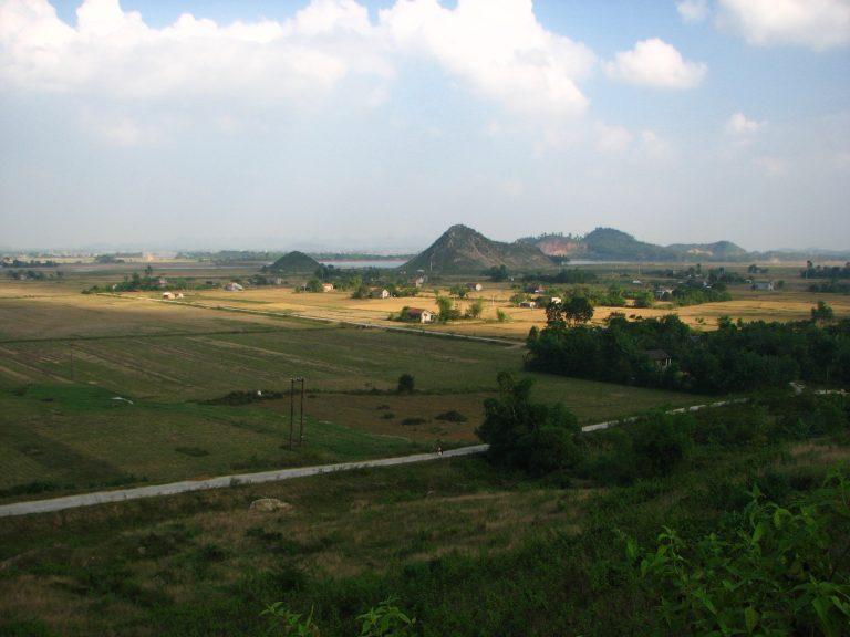Cuc Phuong National Park, by cedar