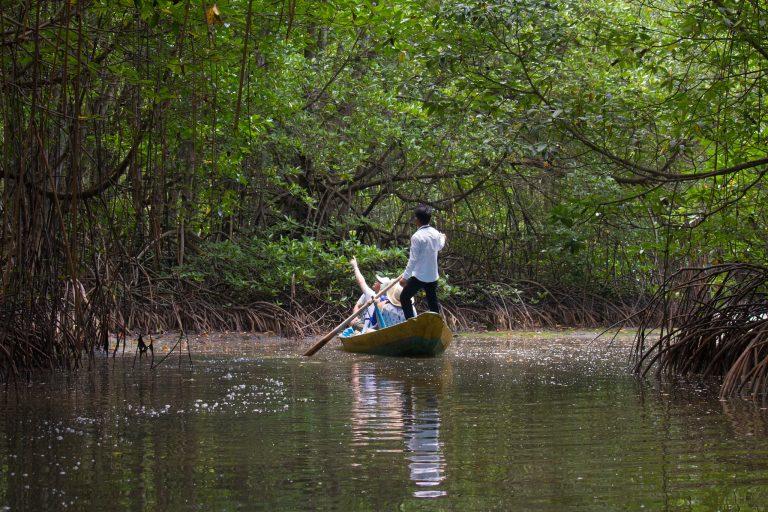Mangrove swamp, Can Gio Forest, Mekong Delta by Garrett Ziegler