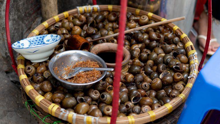 a big basket of snails