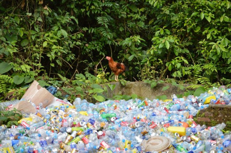 pile of waste cans and plastic bottles in cuc phuong national park